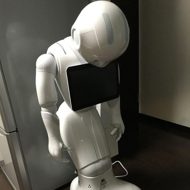 Robot siêu trí tuệ Pepper bị sa thải ở nhiều quốc gia, điều gì khiến các nhà sản xuất phải cúi đầu xin lỗi: Chúng tôi cũng bất lực rồi! - ảnh 3