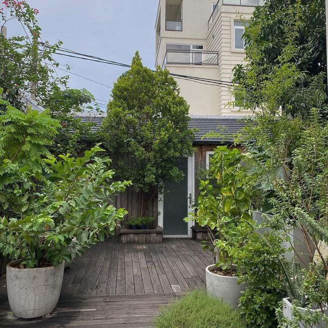 """""""Đột nhập"""" vườn cây trái trĩu cành trong biệt thự triệu đô nhà Hà Tăng, chỉ xem ảnh thôi mà ai cũng muốn… thu hoạch hộ gia chủ! - Ảnh 1."""