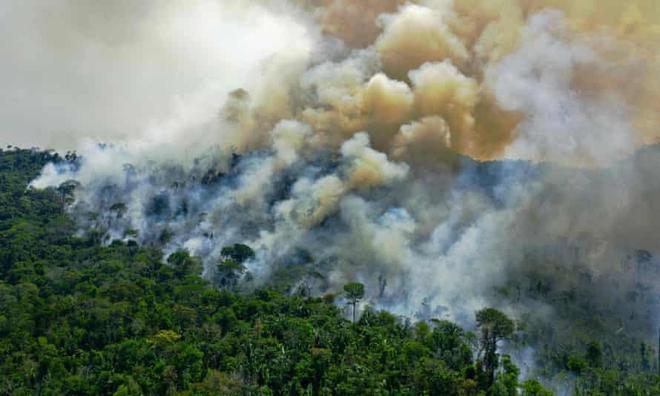 Tin rất buồn: Rừng Amazon chạm đến điểm cực hạn, đang phát thải CO2 còn nhiều hơn khả năng hấp thụ - ảnh 2