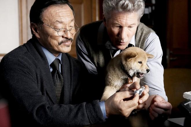 Top 10 phim đỉnh nhất thế giới theo khán giả Trung: 1 phim Hoa ngữ vượt mặt loạt bom tấn Hollywood, xem sẽ mất cả lít nước mắt! - ảnh 2