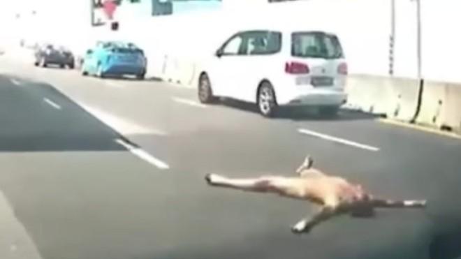 Liên tục xuất hiện nam thanh nữ tú trần như nhộng trên đường phố Singapore trong thời gian giãn cách - ảnh 3