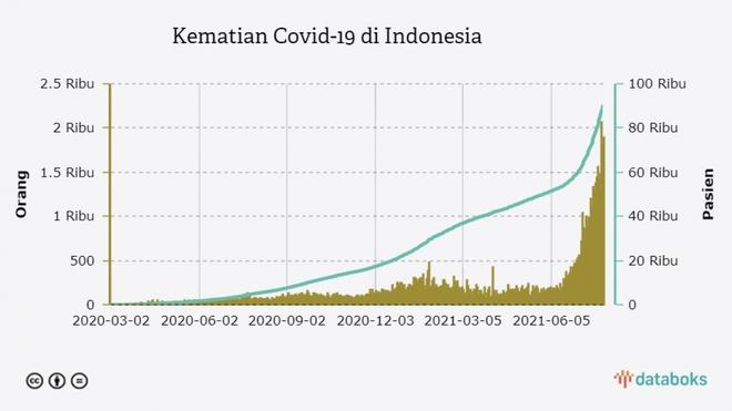 Indonesia còn xa mục tiêu kiểm soát được đại dịch Covid-19 - ảnh 1
