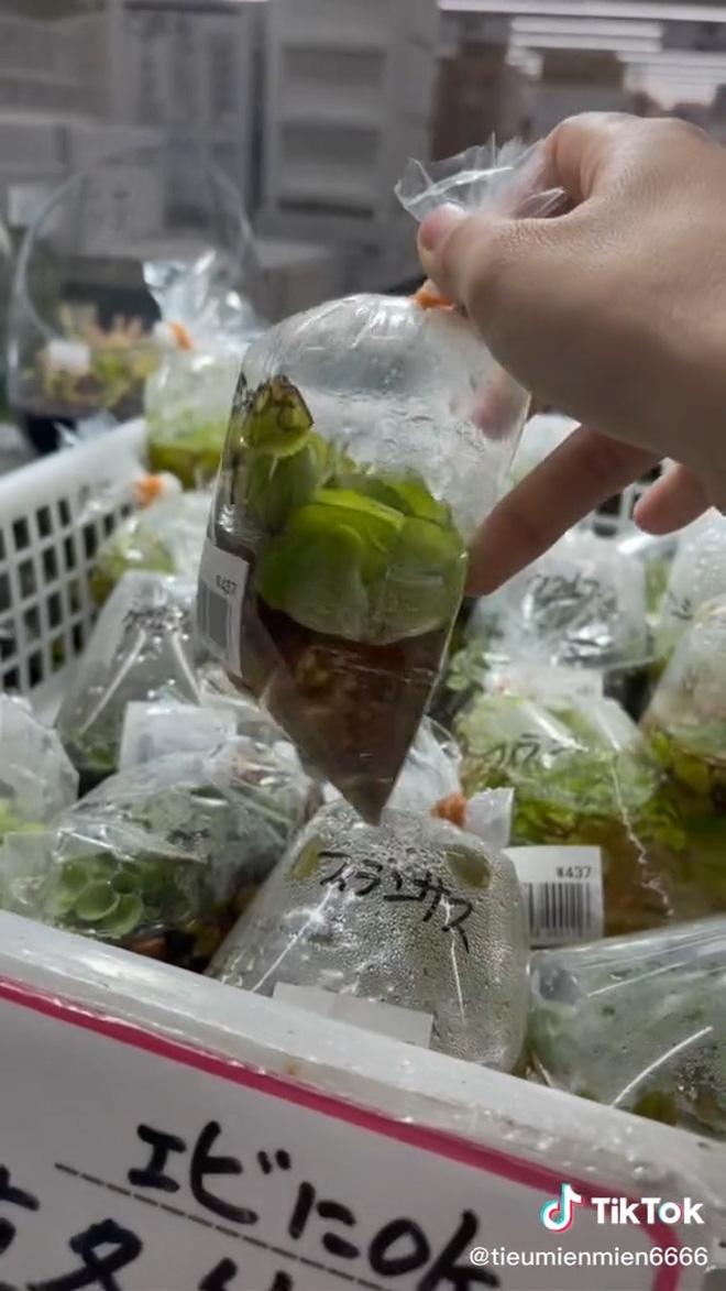 """Những thứ ở Việt Nam chỉ cho gà ăn mà sang Nhật giá cực đắt khiến dân mạng xôn xao: """"Thế này thì nhà mình giàu to rồi""""! - Ảnh 2."""