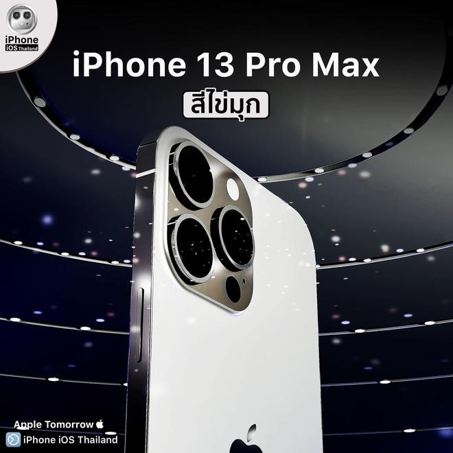 Cộng đồng mạng phát sốt với thông tin vừa được hé lộ về 4 chiếc iPhone 13 - ảnh 11