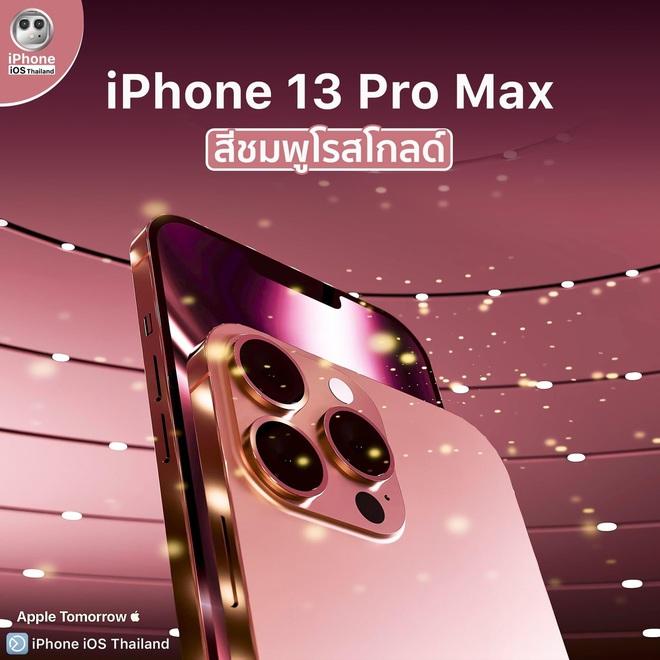 Cộng đồng mạng phát sốt với thông tin vừa được hé lộ về 4 chiếc iPhone 13 - ảnh 12