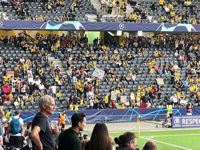 Fan Young Boys thi nhau mang biển xin áo Ronaldo - ảnh 2