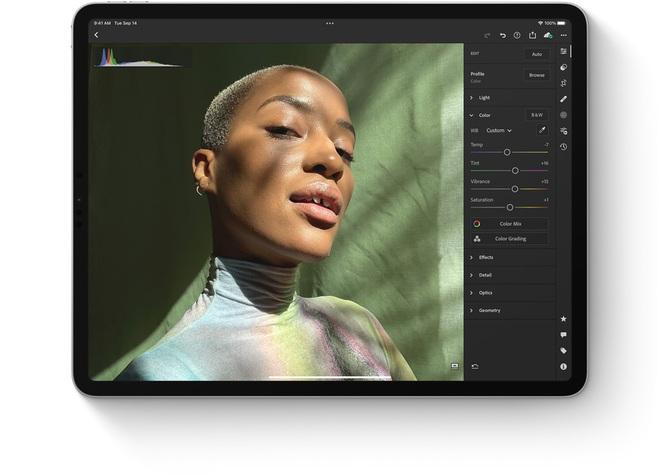 Vì sao iPad mini rất nhỏ gọn lại có giá đắt hơn iPad 9? - ảnh 12