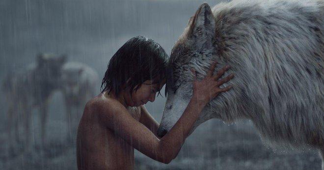 Sao nhí Jungle Book dậy thì thành công: Visual lãng tử quá trời đất, thế mà lại ở ẩn tại Hollywood tiếc ơi là tiếc! - ảnh 3