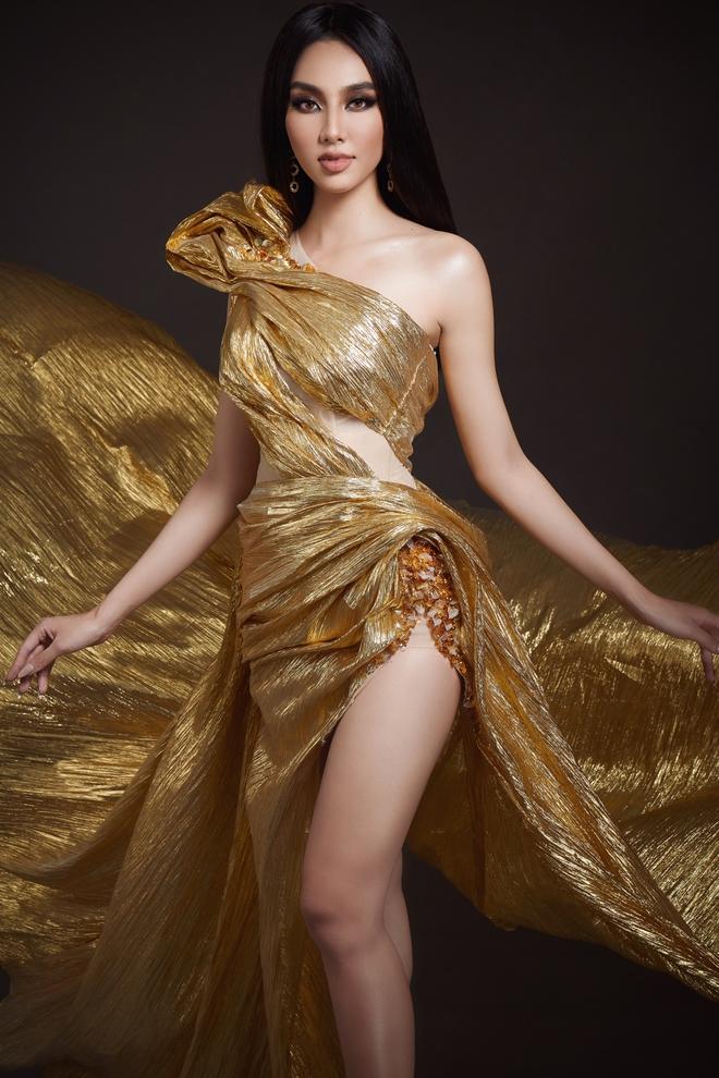 Lộ 2 trang phục dân tộc của mỹ nhân Việt tại Miss Grand 2021, có cả hình ảnh y bác sĩ tuyến đầu? - ảnh 6