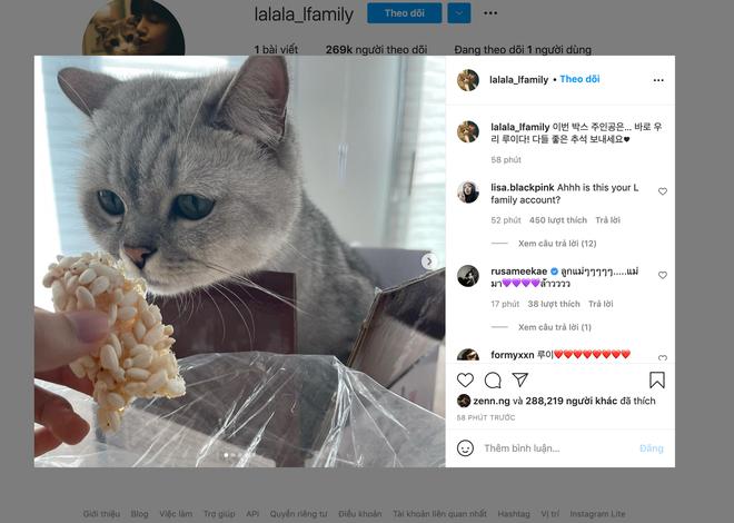 Lisa (BLACKPINK) lập tài khoản Instagram cho một nhân vật đặc biệt, nhìn số followers nhảy từng giây mà chóng mặt! - ảnh 4
