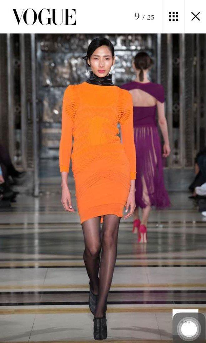 Mùa Fashion Week năm ấy, Hoàng Thuỳ lộ hàng - ảnh 12