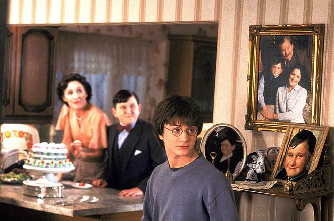 Tiết lộ lý do cực đen tối khiến Harry Potter bị cả nhà Dursley hành hạ: Bằng chứng được sắp đặt từ tập 1 mà không ai phát hiện? - ảnh 5