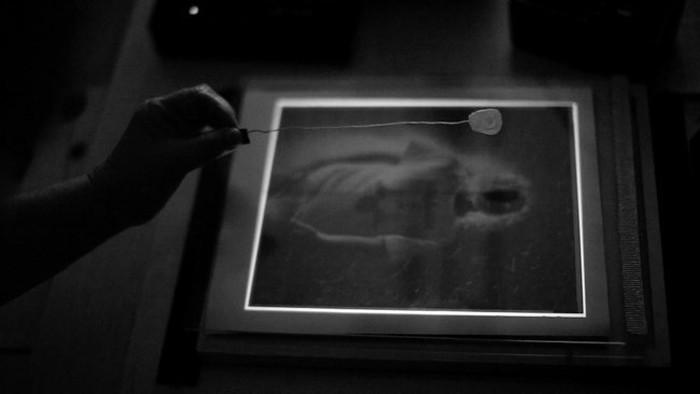 Large Format:  Ông tổ của ngành nhiếp ảnh hiện đại và những tấm ảnh có thể to như bức tranh treo tường - Ảnh 6.