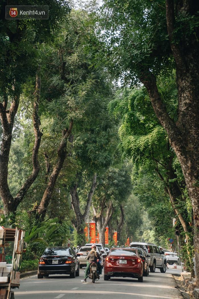 Những tuyến phố có hàng cây xanh được quy hoạch 100 năm trước ở Hà Nội giờ ra sao? - Ảnh 12.