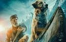 Tiếng Gọi Nơi Hoang Dã: Hành trình chinh phục số phận đầy thách thức của chú chó Buck