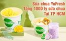Sữa chua trân châu tươi Yofresh tặng khách hàng 1000 cốc nhân khai trương tại TP.HCM