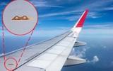 """Những bí mật về chiếc cánh máy bay có thể khiến bạn """"sốc"""" vì ngạc nhiên: Hoá ra loại chúng còn hay đi chỉ có 1 cánh?"""