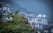 """""""Điểm danh"""" bộ sưu tập giải thưởng khủng của khu nghỉ dưỡng tại bán đảo Sơn Trà"""