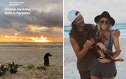 Xót xa hình ảnh chú chó buồn bã ngồi đợi nhà vô địch thế giới tại bờ biển nơi anh không may bị chết đuối