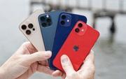 Nóng: 4 mẫu iPhone 12 lại tiếp tục giảm giá cực mạnh