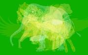 Quiz: Bạn thấy con vật nào đầu tiên trong hình ảnh hack thị giác này? Đáp án có thể xác định tính cách của mỗi người cực chuẩn xác