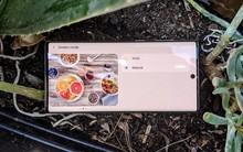 XDA: Màn hình của Galaxy Note 10 sáng nhất, nhưng màu sắc chưa chính xác