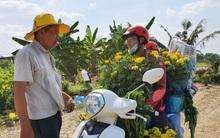 """Thương lái """"bùng"""" 3.000 chậu hoa vạn thọ của lão nông Sài Gòn vào 28 Tết, cộng đồng mạng chung tay mua sạch"""