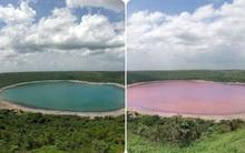 """Hồ nước 50.000 năm tuổi biến thành """"sữa dâu"""" chỉ sau một đêm khiến giới khoa học ngẩn ngơ, chẳng ai hiểu vì sao"""