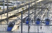 10 tàu siêu tốc Shinkansen ngập trong bão Hagibis trị giá bao nhiêu?