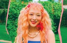 Sánh đôi cùng bài hát của IU, ca khúc Sulli phát hành solo giữa năm nay cũng tăng view vùn vụt, lần đầu xuất hiện trên BXH nhạc số