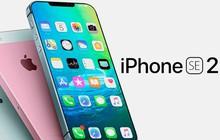 """3 tin siêu hot về iPhone SE 2 vừa tuồn ra, nghe xong chỉ muốn """"gom lúa"""" chờ bung lụa ngay cho nóng"""