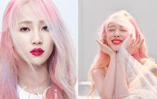 Netizen tố cáo Choiza gián tiếp hại chết Sulli, mỹ nhân Wonder Girls phản pháo lại hay đến mức khiến ai cũng phải gật gù