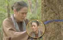 """Thị Bình đi lạc hết nửa tập 39 """"Tiếng Sét Trong Mưa"""" trong rừng cao su"""