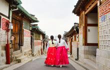 Đầu xuôi thì đuôi lọt: Đừng bao giờ mang những vật dụng này vào Hàn Quốc nếu muốn được nhập cảnh suôn sẻ!