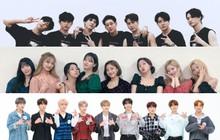 Trước khi dự AAA Việt Nam, đại gia đình JYP gồm GOT7, TWICE, Stray Kids đồng loạt thông báo tái xuất tại Hàn cuối 2019