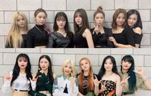 """(G)I-DLE công bố lightstick chính thức nhưng đàn chị CLC lại bị """"gọi hồn"""" nhiều hơn, lí do là gì?"""