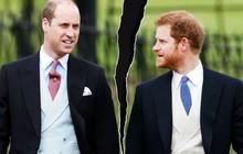 """Hoàng tử Harry thừa nhận mối quan hệ rạn nứt với anh trai: """"Chúng tôi đang đi trên con đường riêng của mình""""?"""