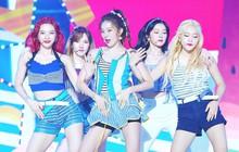 Red Velvet thông báo concert mới, fan đoán luôn ra thời điểm nhóm tái xuất, nghi chạm trán với MAMAMOO