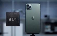 Tin xấu cho iPhone 11: Update lên iOS 13.1.3 có thể gây lỗi phần cứng nghiêm trọng