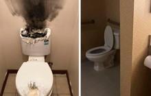 Chàng trai sửa bể phốt trong 2 năm và đây là những nhà vệ sinh đã ám ảnh anh ta cả trong giấc ngủ