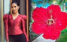 """Đối thủ của Hoàng Thùy chọn ngay trang phục hoa dâm bụt """"đỏ thơm"""" tại """"Miss Universe"""""""