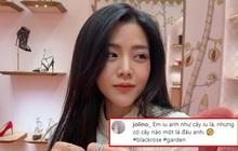 Miệt mài rắc thính thế này mà em gái Ông Cao Thắng vẫn giữ chức hội trưởng hội FA: Thiệt khó tin quá đi!
