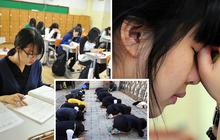 """Giáo sư Hàn Quốc đang ghi tên con em mình vào làm đồng tác giả nghiên cứu - tất cả là vì cuộc thi đại học """"tàn khốc"""" nhất thế giới"""