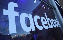 """Tại sao Facebook bỏ qua cơ hội """"triệt"""" TikTok ngay từ trong trứng nước?"""