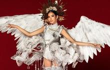 """Netizen ủng hộ Hoàng Thùy mang trang phục """"Cò"""" sải cánh tại """"Miss Universe 2019"""""""
