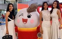 Livestream: Tân Hoa hậu Hoàn vũ Khánh Vân cùng 2 Á hậu rạng rỡ trở về sau đăng quang, fan vây kín sân bay đón chào