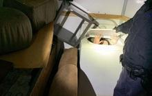 Người di cư Trung Quốc trốn trong máy giặt vượt biên vào Mỹ
