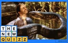 Trăn khổng lồ Anaconda - hung thần của Amazon hiền hơn bạn tưởng và những sự thật rất nhiều người hiểu sai về con quái vật này