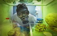 Chúng ta có thể đang sống chung với chất độc gấp 68 lần so với asen trong chính căn bếp của mình mà không hề hay biết