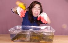 """Những tưởng chỉ chật vật với cá to, nào ngờ cá nhỏ cũng khiến Youtuber Ssoyoung hốt hoảng nhưng sau đó vẫn """"lật mặt"""" như thường"""